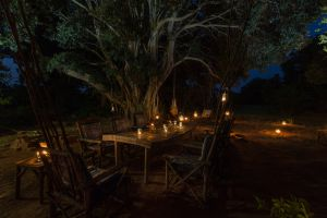 Abloom Spa And Bush Lodge-2268