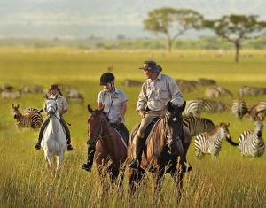 Abloom Activities Horseback Safari